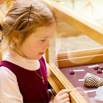 little girl looking at museum display